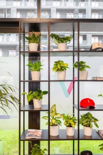 LivinnX Kraków – Leasing Office Plants